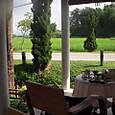 旅館のテーブルから見える風景