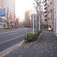 年末の風景(青梅街道沿い)